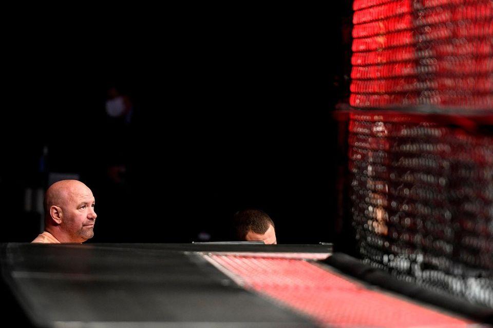 UFC President Dana White watches UFC Fight Night