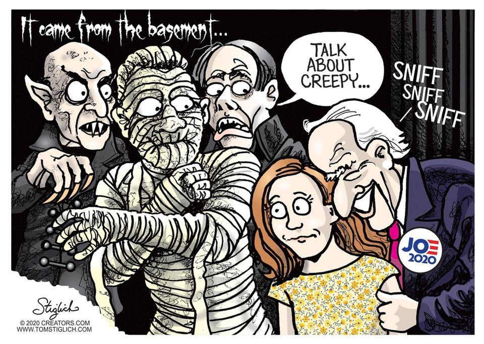 2020 Presidential Election Cartoons Newsday