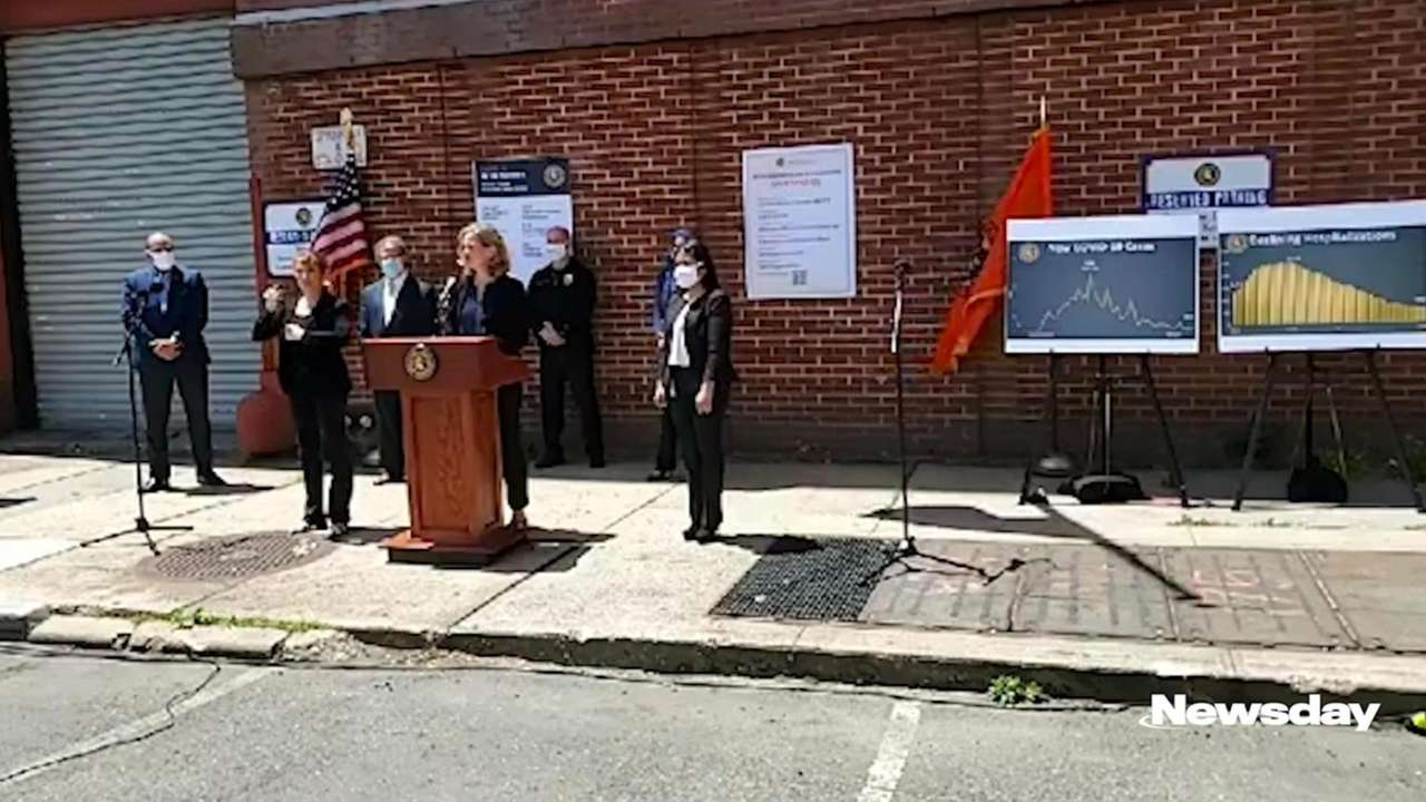 Nassau County Executive Laura Curran said Fridaythe county