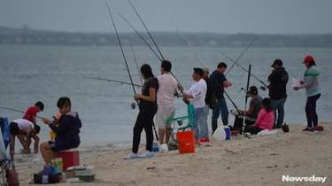 Overcrowding of Cedar Beach, in Southold, lead Suffolk