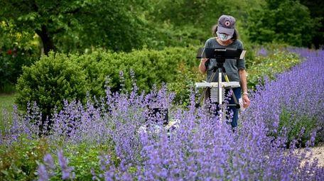 Susan Sterber of Farmingdale paints amongst the flowers