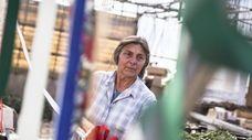 Janice Papa had co-owned Papa's Farm and Greenhouses