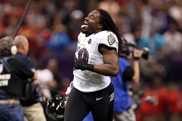 Dannell Ellerbe of the Baltimore Ravens celebrates on