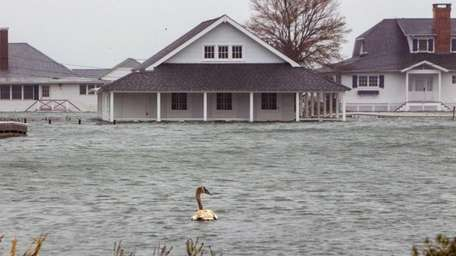 Floodwaters run through Cutchogue late last year after
