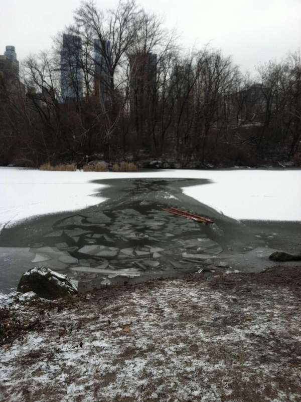 Two teens were rescued from an icy pond