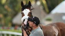 Tiz the Law gets a kiss from barn