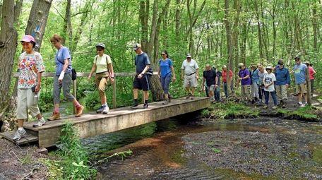 Hikers led by Quyen Pham, left, hike through