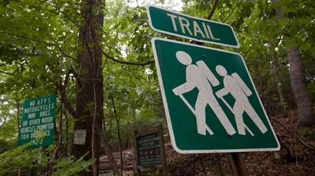 Runners at The Nassau-Suffolk Greennelt trail in Cold