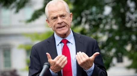 White House trade adviser Peter Navarro in June.