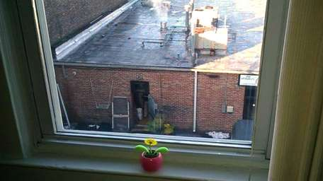 Steam rises from the bagel shop exhaust fan,
