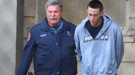 Andrew Schreier, 19, of Elmont, was charged with