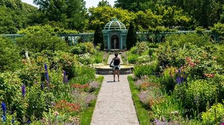 Old Westbury Gardens has reopened its grounds for