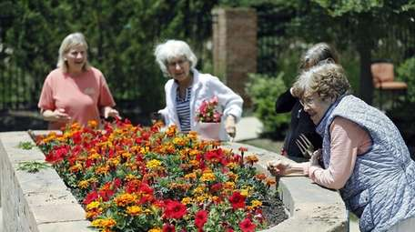 Tending to flowers at Dublin Retirement Village are,