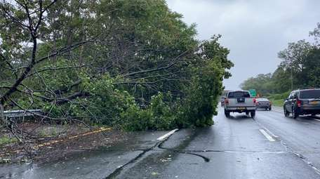 A tree down on the westbound Southern State