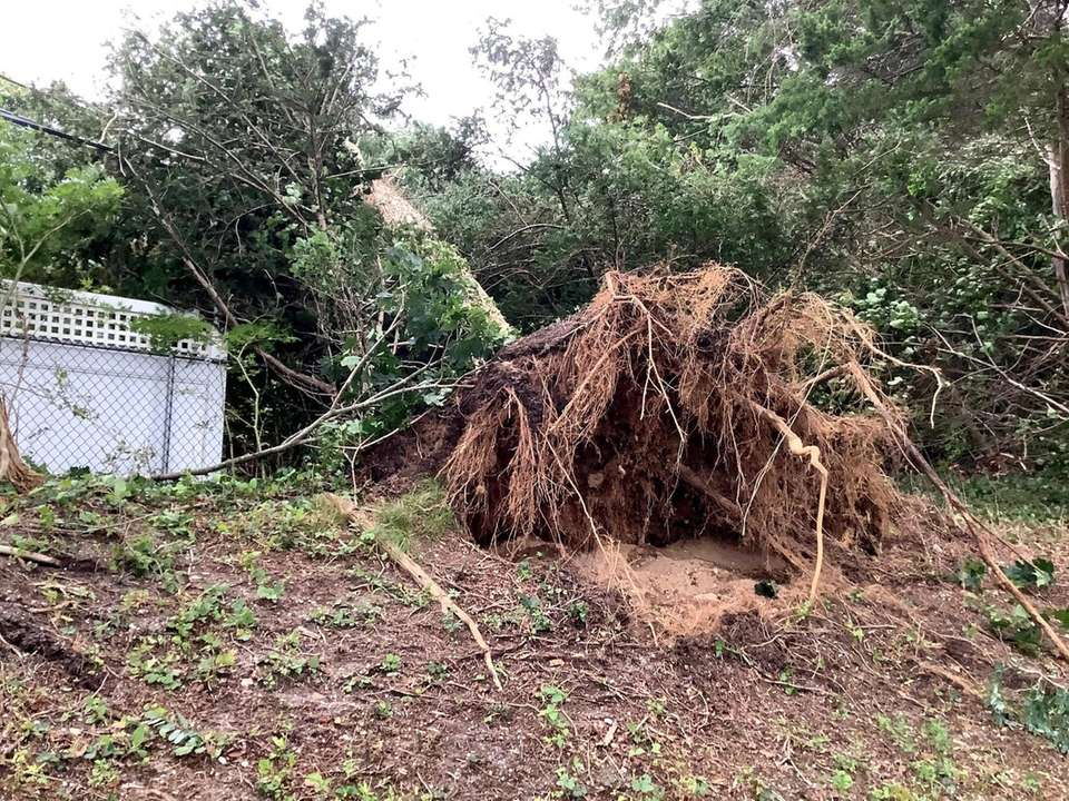 High winds from Tropical Storm Isaias downed a
