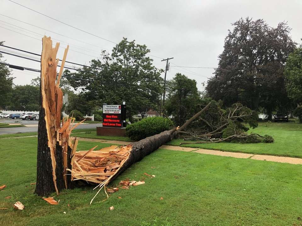 High winds from tropical storm Isaias brought down