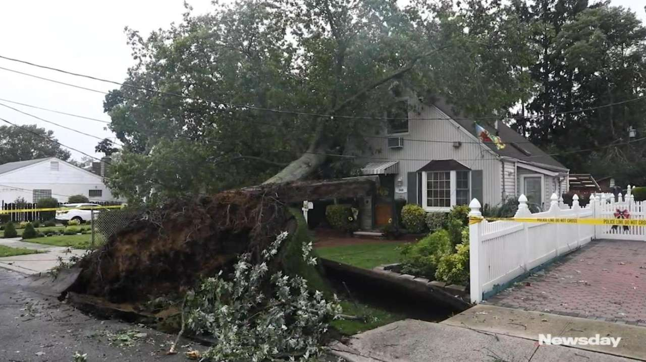 Homeowner Phil DeVito is grateful no one was