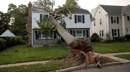 A tree split the upper level of this
