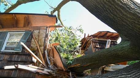 A home destroyed by a tree at 29