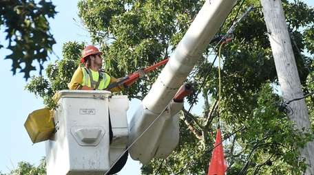 A work crew clears trees from utility lines