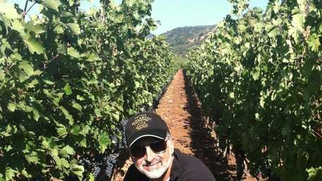 Winemaker Jeff Morgan with Solomon grapes in the