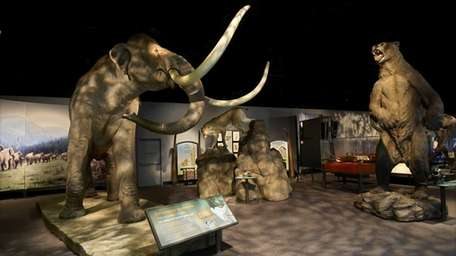 The Denver Museum of Nature and Science is