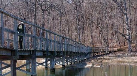 A bridge along a path at Sagamore Hill