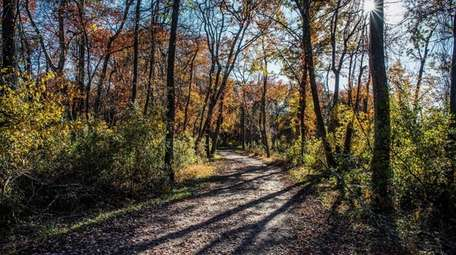 Trails people can enjoy in Connetquot River State