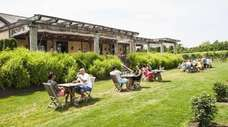 People sit next to the vineyard for tastings