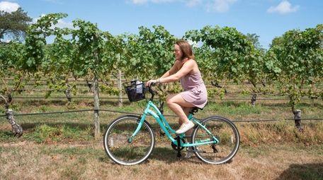 Rent a bike and take a tour around