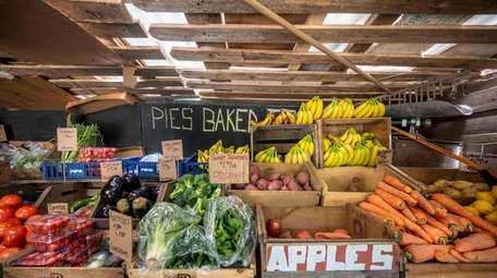 Shop the farm stand at Organics Today Farm
