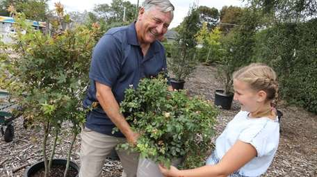 Bruce Larsen shops for trees with his granddaughter,