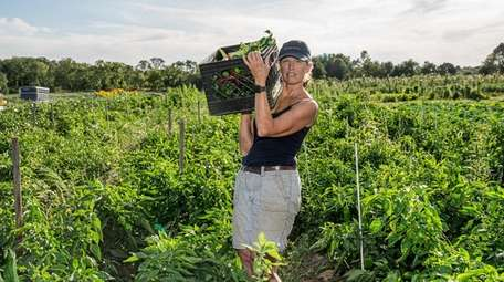 Michelle Hart, who co-owns at Deep Roots Farm