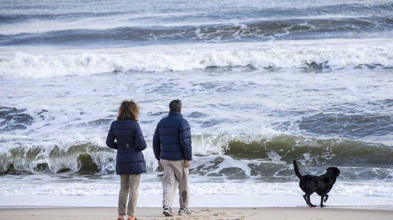 A couple walks with their dog along Main