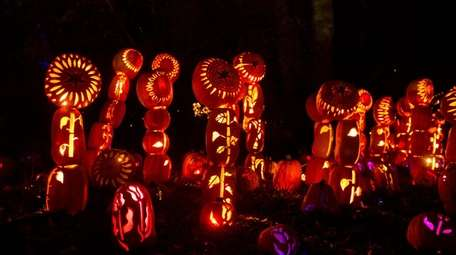 The Great Jack O'Lantern Blaze is coming to