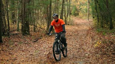 Cathedral Pines County Park in Middle Island offers
