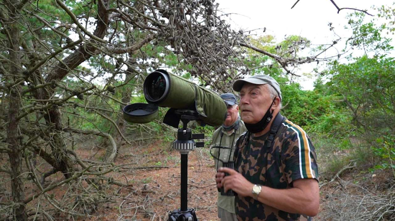 Bird-watching has proved to be very popular among
