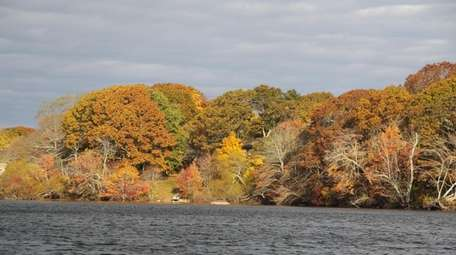 A view of fall foliage in late October