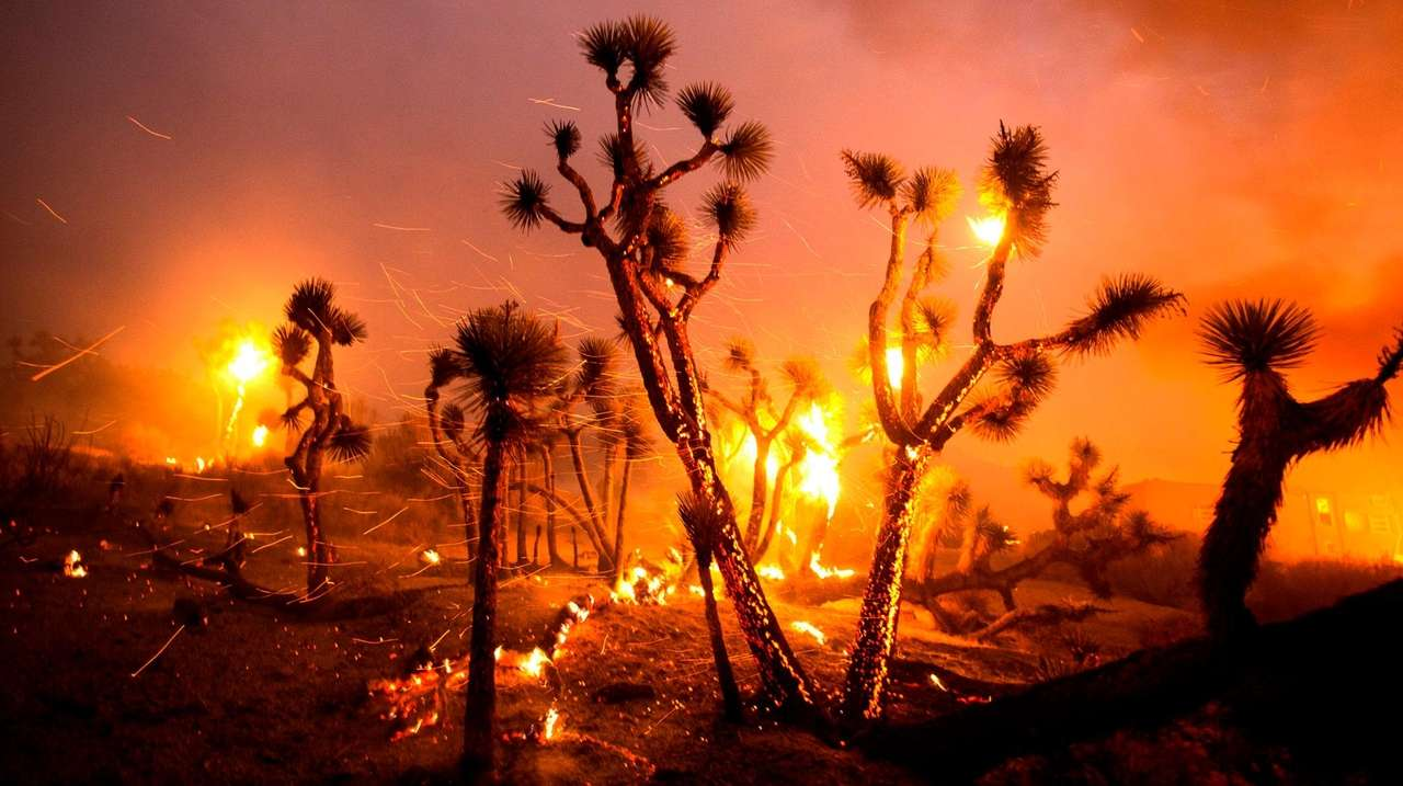 There will be more wildfires. What should we do?