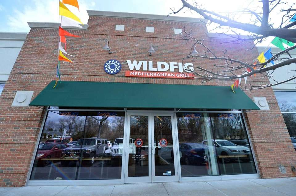 Wild Fig in Roslyn. (March 27, 2013)