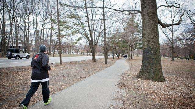People use the jogging trail along Pelham Parkway.