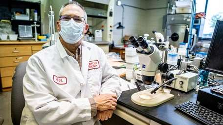 Dr. Scott Campbell, an entomologist and chief of