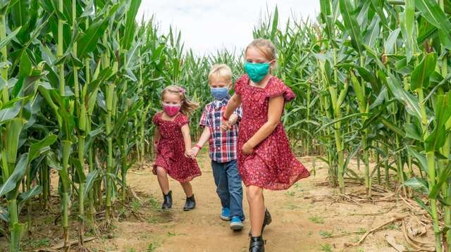 Siblings Piper Facchiano, Charlie, 5, and Arianna, 7,