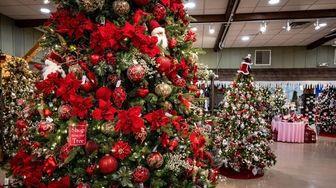 A Christmas display at Hicks Nurseries in Westbury