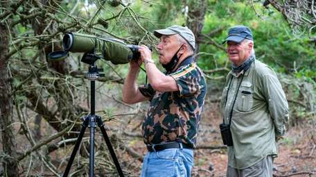 Harvey Farber, left, and Richard Haimes watch birds