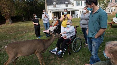 Marie Homan, 77, of Eastport, greets a deer
