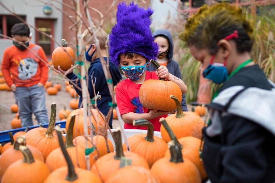 Kindergartner Carter Lockhart, center, picks a pumpkin to