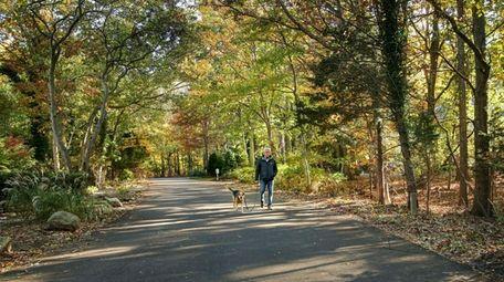 Mel Kravitz walks his dog, Chloe, through the
