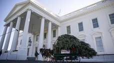 The White House Christmas Tree is delivered to