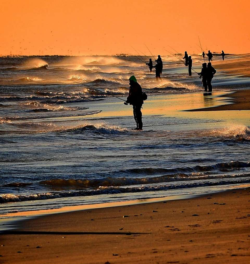 Surfcasters apply their skills as they fish in